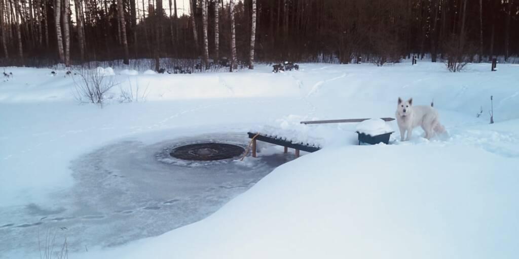 Dīķa iemītnieku glābiņš: Aerācija dīķī ziemā!