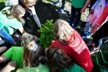 Lielā Talka izsludina konkursu pašvaldībām par Laimes koku parku!